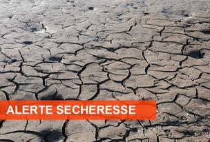 Sécheresse : attention vigilance