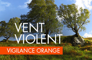Vigilance orange - vent violents